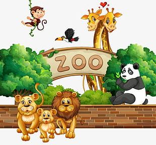 Small Zoo Animals PNG