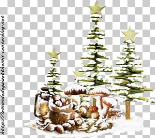 Christmas Tree Christmas Ornament Fir PNG