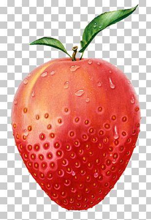 Strawberry Apple Fruit Peach Illustration PNG