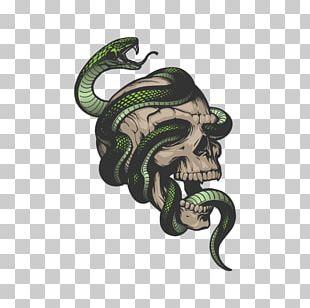 Snake Skeleton Skull Drawing PNG