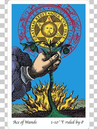 Alchemy Tarot Splendor Solis Sacred Geometry Circle PNG