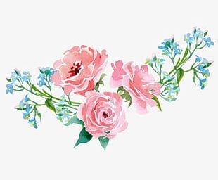 Hand-painted Flowers Plants PNG