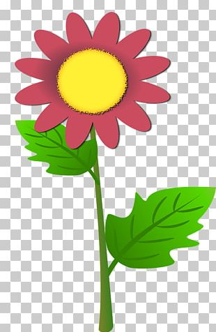 Flower Cricut Stock Photography PNG