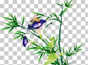 Floral Design Leaf Plant Stem Illustration PNG
