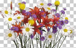 Flower Bouquet Desktop Display Resolution Lilium PNG