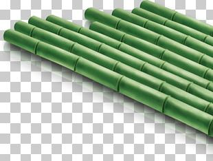 Bamboo Clapper Phyllostachys Nigra PNG