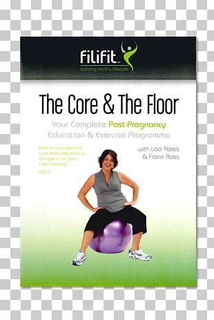 Pelvic Floor Pelvis Kegel Exercise Diastasis Recti PNG