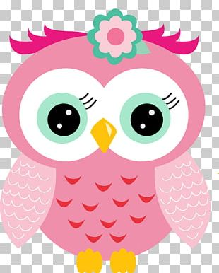 Drawing Little Owl Pink Paper Party PNG