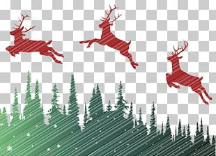 Reindeer Text Graphic Design Christmas Ornament Illustration PNG