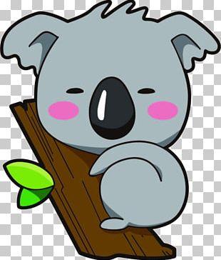 Koala Bear Cartoon PNG