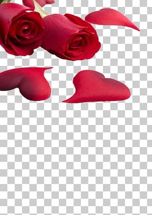 Rose Love Heart Valentines Day PNG