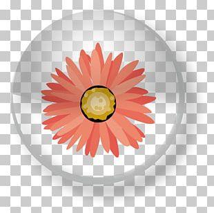Adobe Illustrator Rasterisation Object-oriented Programming Software PNG