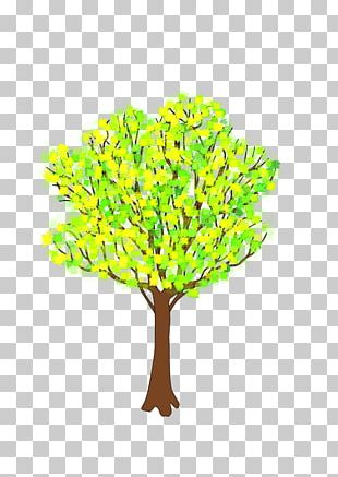 Branch Tree Spring PNG