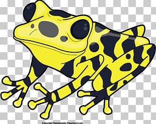 Yellow-banded Poison Dart Frog Green And Black Poison Dart Frog PNG
