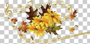 Flower Musical Note Photography PNG