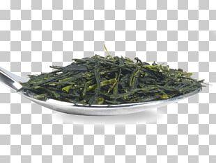 Gyokuro Nilgiri Tea Oolong Hōjicha Bancha PNG