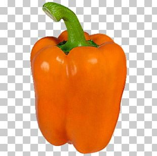 Bell Pepper Chili Pepper Vegetarian Cuisine Food Cayenne Pepper PNG