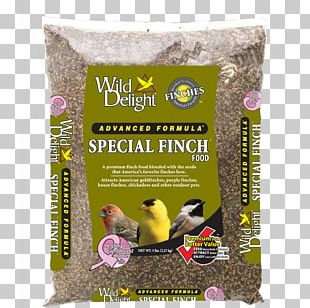 Bird Food Finches Atlantic Canary PNG