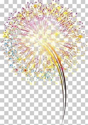 Fireworks Artificier PNG