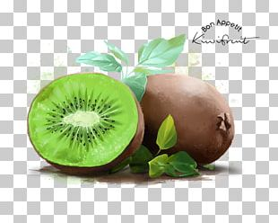 Kiwifruit Stock Photography Watercolor Painting Poster PNG