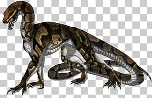 Snake Ball Python Reptile Dragon Bitis Arietans PNG