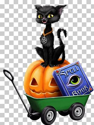 Black Cat Halloween Boszorkány Pumpkin PNG