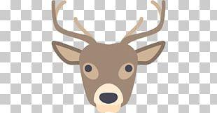 Reindeer Computer Icons Ape PNG