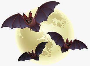 Creative Halloween Bat PNG
