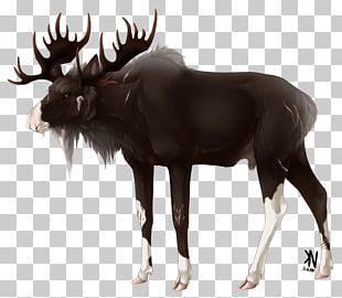 Moose Reindeer Cattle Antler Wildlife PNG