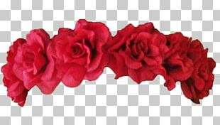 Wreath Flower Crown Garland Red PNG