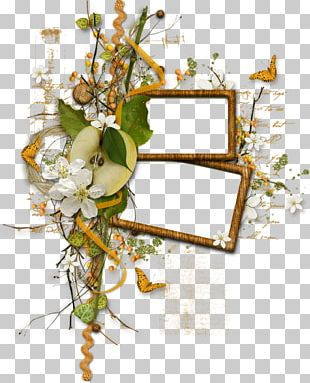 Frames Film Frame Photography PNG