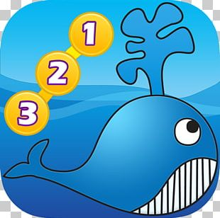 Marine Biology Marine Mammal Fish PNG