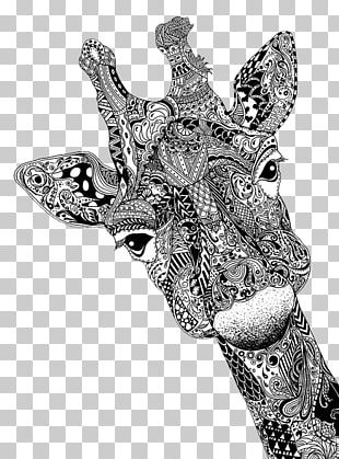 Coloring Book Drawing Doodle Giraffes Can't Dance Adult PNG