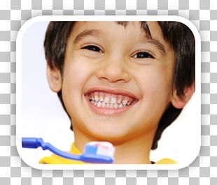 Tooth Brushing Pediatric Dentistry Child Human Tooth PNG