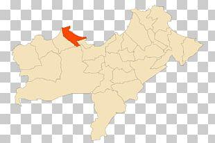 Map Ecoregion Tuberculosis PNG