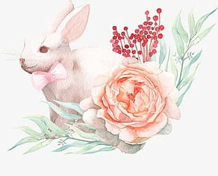 Rabbit With Bow PNG