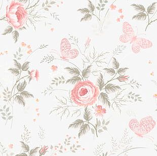 Flowers Shading PNG