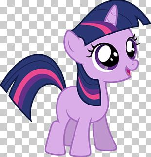 Twilight Sparkle Rarity Fluttershy My Little Pony PNG