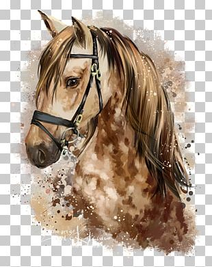 Horse Pony Watercolor Painting Drawing PNG