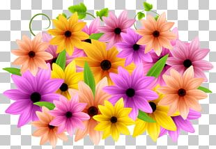 Flower Ornament Decorative Arts PNG
