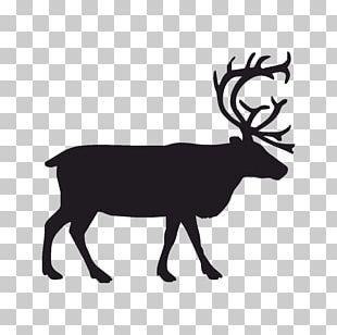 Deer Graphics Portable Network Graphics PNG