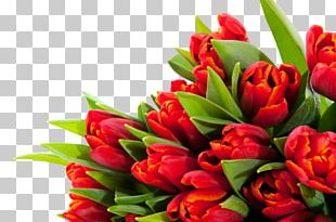 Tulip Floral Design Cut Flowers Flower Bouquet PNG