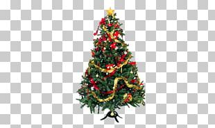 Christmas Tree Christmas Lights Christmas Ornament Pre-lit Tree PNG