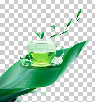 Green Tea White Tea Cup PNG