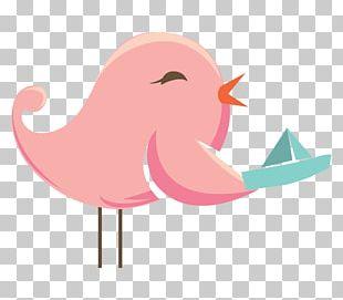 Water Bird Vertebrate Beak PNG