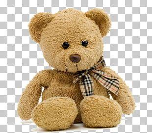 Teddy Bear Child Stuffed Toy PNG