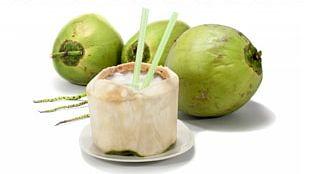 Juice Fizzy Drinks Coconut Water Coconut Milk Sports & Energy Drinks PNG