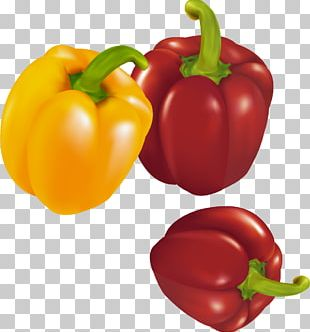 Habanero Red Bell Pepper Chili Pepper Yellow Pepper PNG