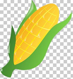 Corn On The Cob Candy Corn Popcorn Sweet Corn PNG