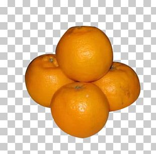 Orange Juice Blood Orange Tangelo Tangerine Mandarin Orange PNG